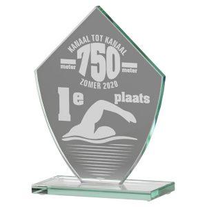 Glazen award standaard met sierlijk ontwerp