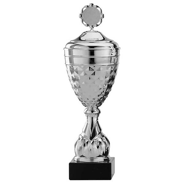 Zilveren trofee met details in het middenstuk