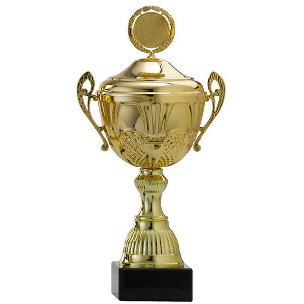 Gouden trofee met mooie details
