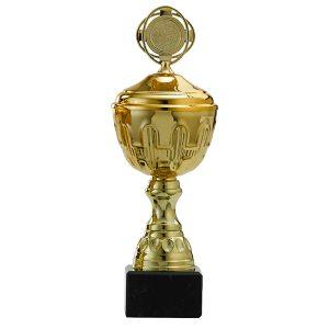 Gouden trofee met prachtige details