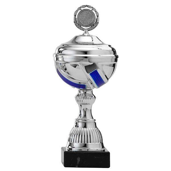 Zilveren trofee met blauwe lijnen als details