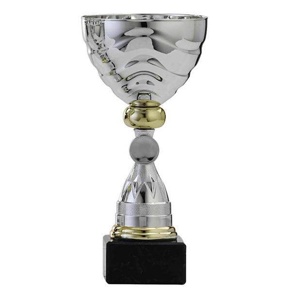 Zilveren trofee met gouden details en lijntjes