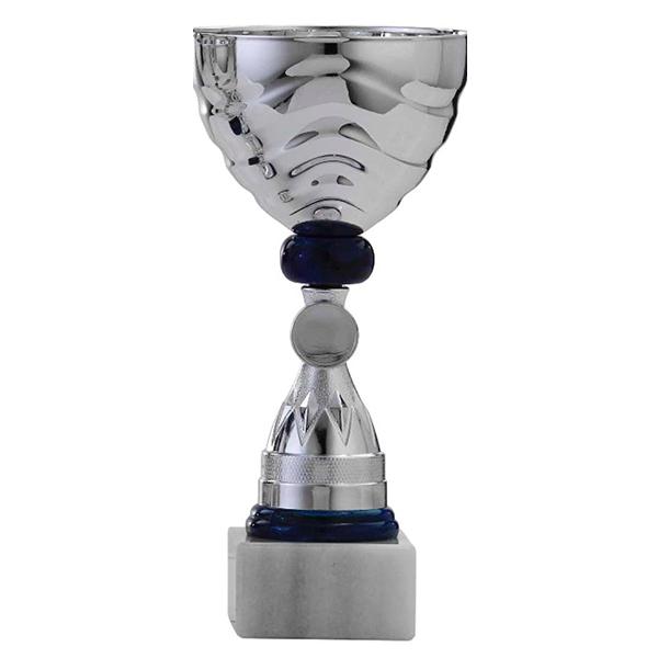 Zilveren trofee met zwarte details en lijntjes in het bovenstuk
