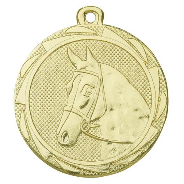 Paardensport medaille goud
