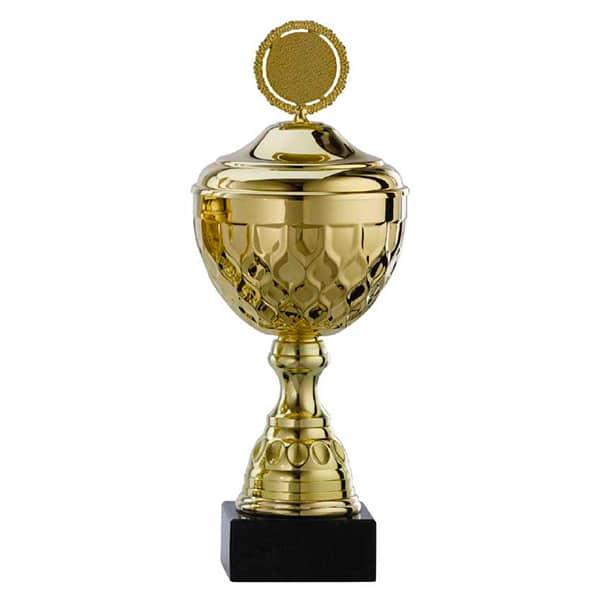 Grote gouden trofee met details