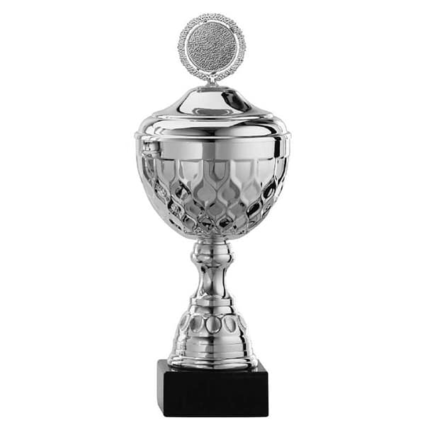 Grote zilveren trofee met details in het middenstuk